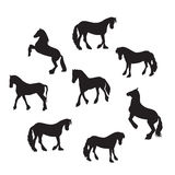 Black Horse Silhouette Set Vector Illustration Royalty Free Stock Photography