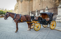 Black horse traditional tourist carriage Sevilla. In front of the Cathedral. Black  horse and traditional tourist carriage in Sevilla Stock Photography