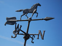 Black horse weather vane blue sky Stock Images