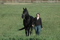 Black horse and woman. Woman leading her black horse in green field Stock Photography