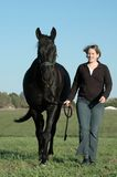 Black horse and woman. Woman leading her black horse in green field Stock Photo
