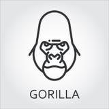 Black icon style line art, head wild animal ape, gorilla. Black flat simple icon style line art. Outline symbol with stylized image of a head of a wild animal Stock Photos