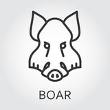 Black icon style line art, head wild animal boar. Black flat simple icon style line art. Outline symbol with stylized image of a head of a wild animal boar Stock Photography