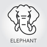 Black icon style line art, head wild animal elephant. Black flat simple icon style line art. Outline symbol with stylized image of a head of a wild animal Royalty Free Stock Photos