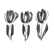 Black ink concept modern tulip flower sketch. Royalty Free Stock Image