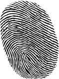 Black ink fingerprint. On white background in vector Stock Images