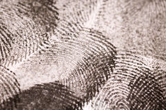 Black Ink Fingerprints Close up Stock Photo