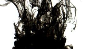 Black inks in water 4K. A drop of black ink in water in slow motion stock footage