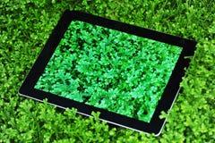 Black ipad 4 on selaginella uncinata plant. Black ipad 4 on green selaginella uncinata plant stock photography