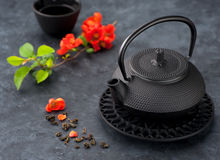 Black iron asian style teapot and cup  tea Royalty Free Stock Image
