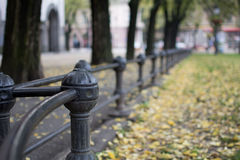 Black Iron fence in the park Royalty Free Stock Photos