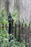 Black iron lamppost with weeping willows and Spanish moss Stock Photography