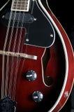 black isolerade mandolinen Arkivbilder