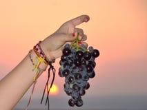 Black Israeli grapes Royalty Free Stock Photography