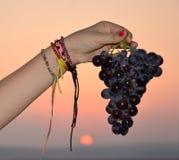 Black Israeli grapes Stock Photo