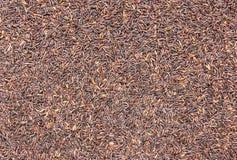 Black jasmine rice background Stock Photo