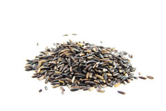 Black jasmine rice berry organic ingredient Stock Photography