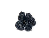 Black  jelly berries Stock Image