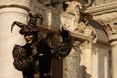 Black jester Stock Images