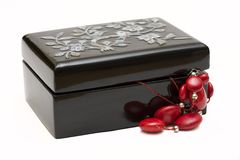 Black jewellery box Royalty Free Stock Photos