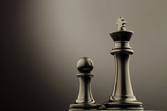 Black king chess piece near pawn Royalty Free Stock Image