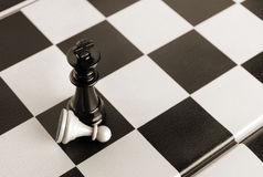 Black king wins white pawn. Chess game. Black king defeats white pawn Stock Image