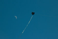 Black kite flying with the moon Royalty Free Stock Photography