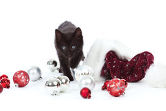 Black kitten with christmas ball ornaments and hat Stock Images