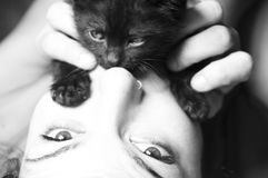 Black kitten with a  girl Stock Photos