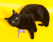 Black kitten lying with toys on yellow Royalty Free Stock Photos