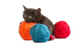 Black kitten playing with a red ball of yarn on white background. Black kitten playing with a red ball of yarn isolated on a white background Royalty Free Stock Images