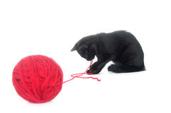Black kitten and red yarn Stock Photography