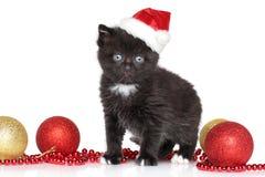 Black Kitten in Santa Red hat Royalty Free Stock Photo