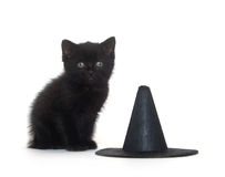 Black kitten and witch hat Royalty Free Stock Images