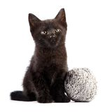 Black kitten with a woolen ball Stock Images