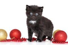 Black Kitty and Christmas balls royalty free stock image