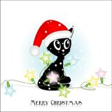 Black kitty with christmas electric lights Stock Photos