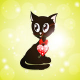 Black kitty with red glossy heart Royalty Free Stock Photos
