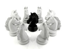 Black knight chess surrounded by a group of white knight chess Stock Photography