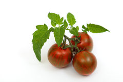 Black Krim tomatoes Royalty Free Stock Image