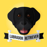 Black Labrador Retriever. Image of a dog's face. Black Labrador Retriever. Vector illustration Royalty Free Stock Photography