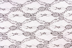 Black lace. With pattern on white background Stock Images