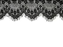 Black lace. On white background Royalty Free Stock Image