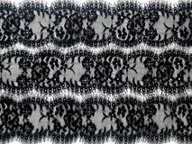 Black lace. On white background Stock Images