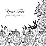 Black lace background with a place for text Stock Photos