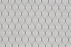 Black lace fabric pattern Royalty Free Stock Images