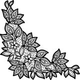 Black and lace floral design isolated on white Stock Photo