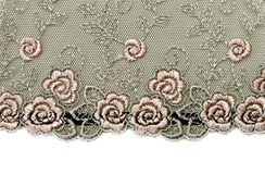 Black lace with pattern rose flowerses. On white background Stock Image