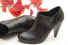 Black lady shoe with leaves Royalty Free Stock Images