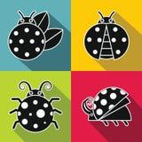 Black ladybug with white stroke on color background Royalty Free Stock Images